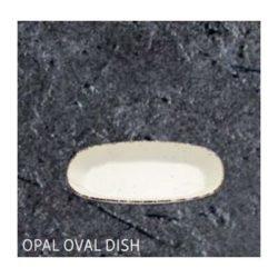 https://mastercatering.hr/wp-content/uploads/2019/11/OPAL-ovalni-tanjur-MCG.jpg